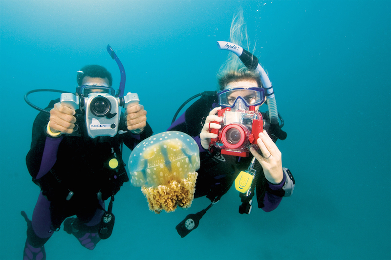 Dive Specialties