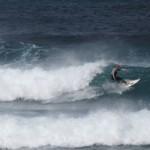 Surf Safari Pura Vida Divehouse