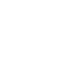 Pura Vida Divehouse logo