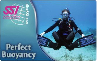 SSI Buoyancy Specialty